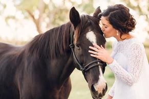 Bride with horse country wedding
