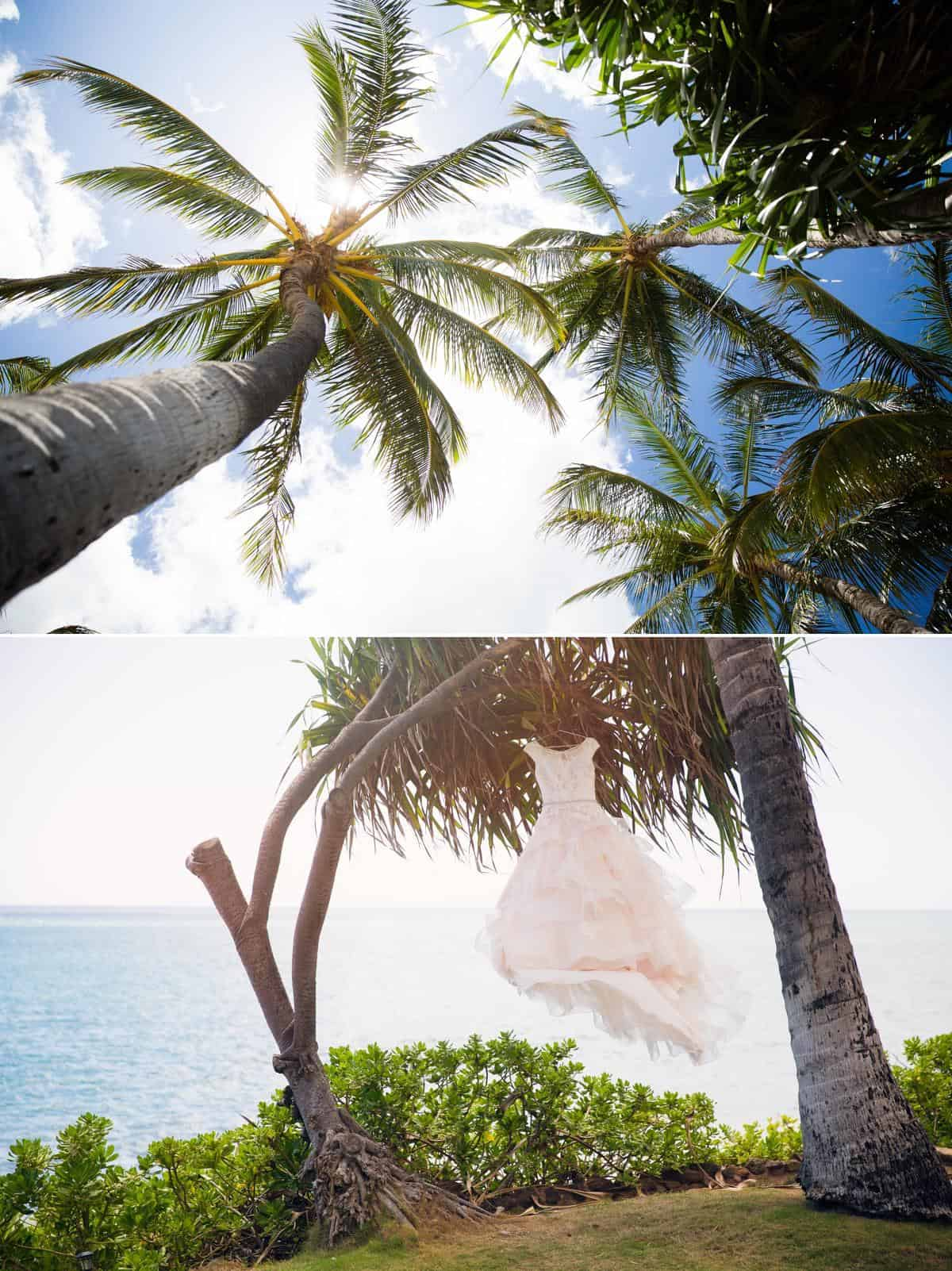 Wedding dress hanging from coconut tree Hawaii Destination wedding photographer www.benandhopeweddings.com.au